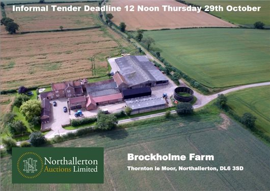 Brockholme Farm Website pic.JPG